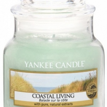 Yankee Candle Small Jar Mały 104g