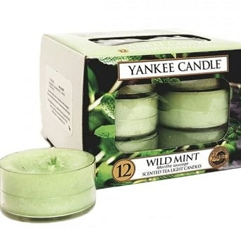 Yankee Candle Tea Light 12 pcs Wild Mint